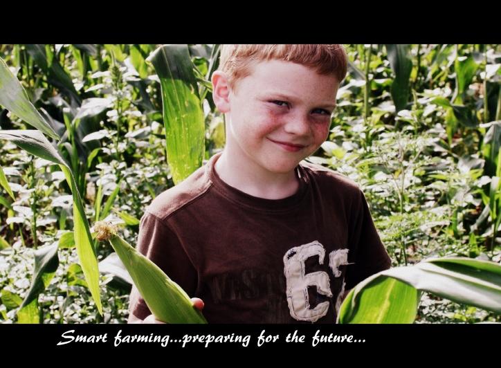 farm 2013 488
